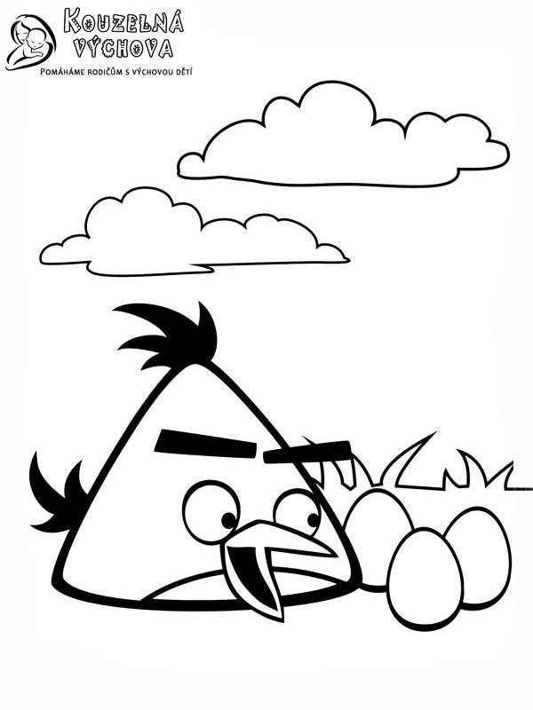 Omalovánky Angry Birds