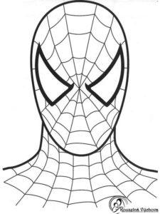 Omalovánky Spiderman 2