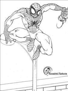 Omalovánky Spiderman 9